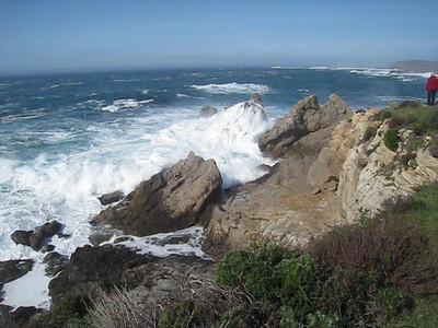 Point Lobos 02-13-2010 21