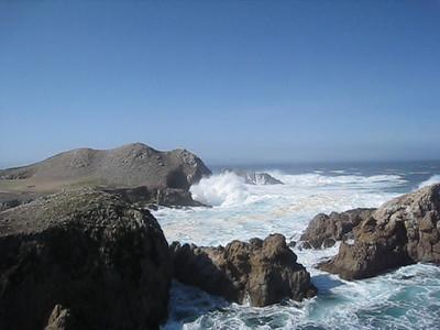 Point Lobos 02-13-2010 22