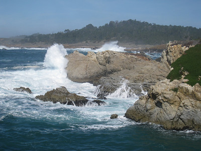 Point Lobos 02-13-2010 05
