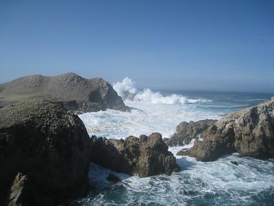 Point Lobos 02-13-2010 12