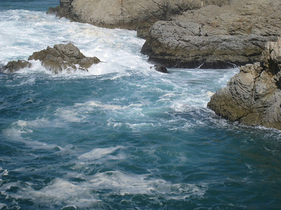 Point Lobos 02-13-2010 04