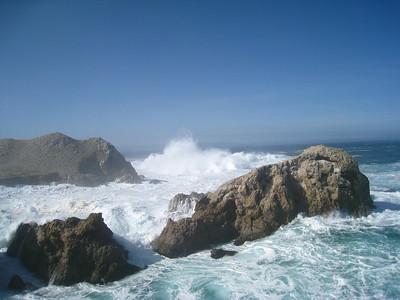 Point Lobos 02-13-2010 09