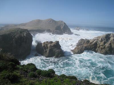 Point Lobos 02-13-2010 08