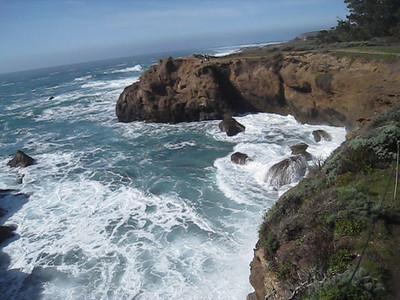 Point Lobos 02-13-2010 20