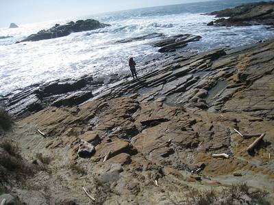 Point Lobos 02-13-2010 19
