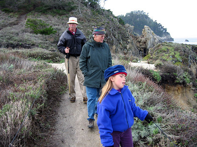 Point Lobos 12:31:0325