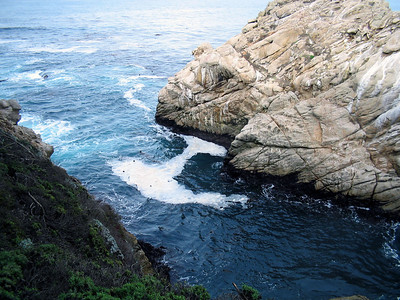 Point Lobos 12:31:0308