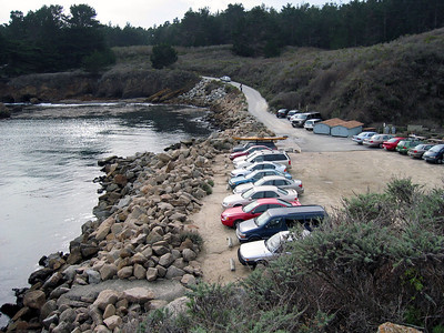 Point Lobos 12:31:0328