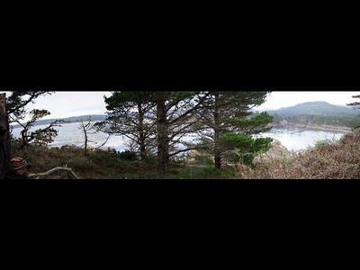 Point Lobos 2003 Movie