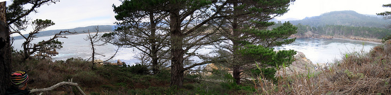 Point Lobos 12:31:0303