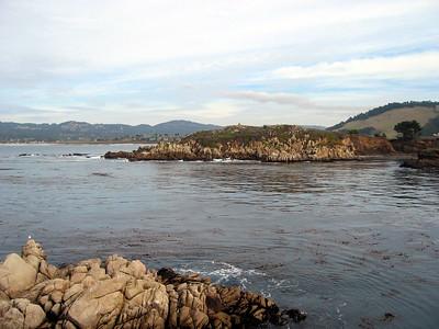 Point Lobos 12:31:0327