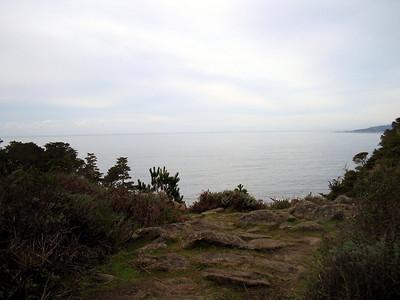 Point Lobos 12:31:0309