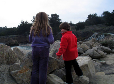 Point Lobos 12:31:0310