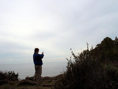 Point Lobos 12:31:0316