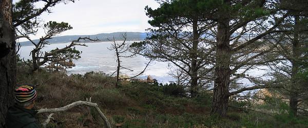 Point Lobos 12:31:0304