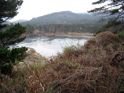 Point Lobos 12:31:0307