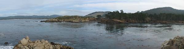 Point Lobos 12:31:0301