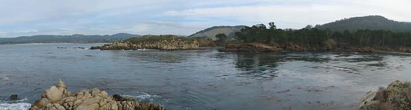 Point Lobos 12:31:0301