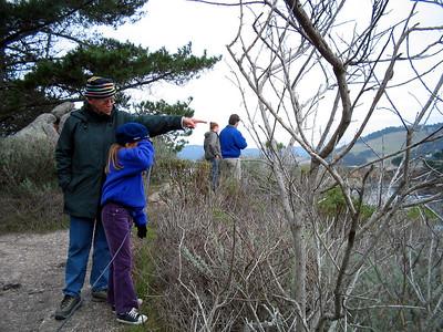 Point Lobos 12:31:0312