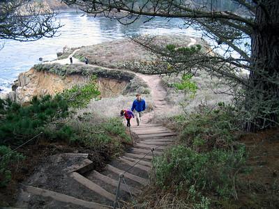 Point Lobos 12:31:0305