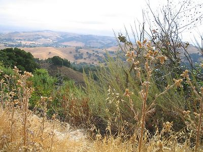 Almaden Quicksilver Hike2