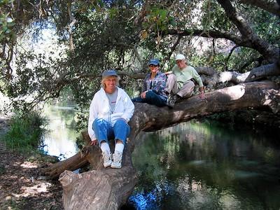 Coyote Creek Trails 07-04 1