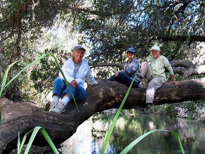 Coyote Creek Trails 07-04 2