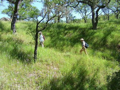 Coe Hike 4-20-2005 03