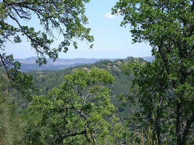Coe Hike 4-20-2005 13