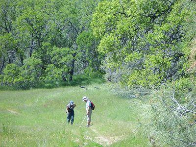 Coe Hike 4-20-2005 28