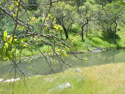 Coe Hike 4-20-2005 25