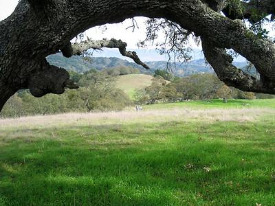 Ranch del Oro 5