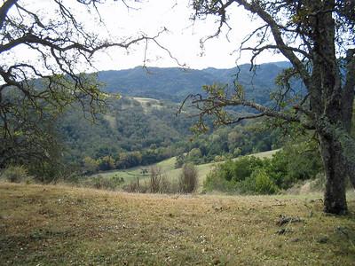 Ranch del Oro 3