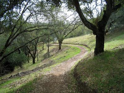 Ranch del Oro 2