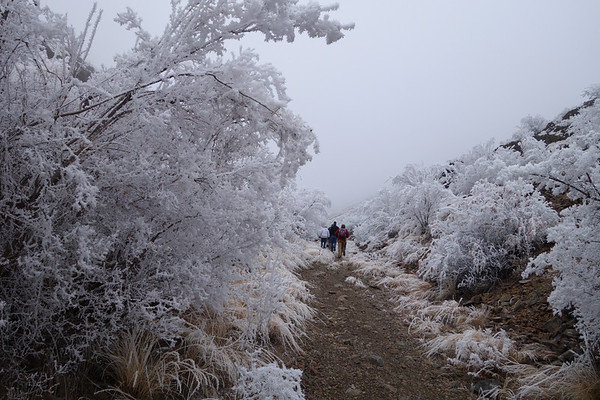 2014-01-25 Black Canyon, Wenas Valley