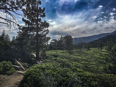 Larry San Bernardino-6328