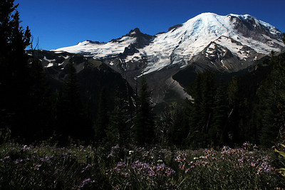 Mount Rainier - Burroughs Mountain Trail - September 3, 2012