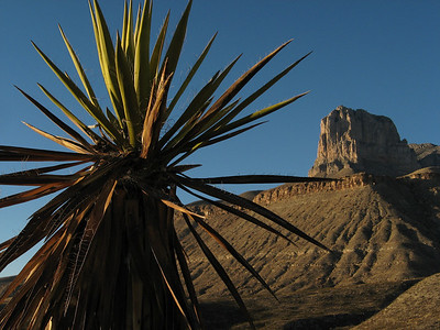 Guadalupe Mountains National Park, TX - January 2-3, 2009