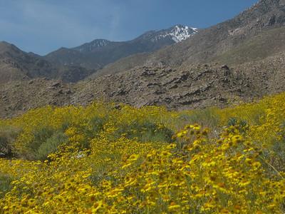 Lykken Trail, Palm Springs - April 10-11, 2010
