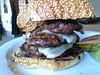 Goat/Lamb/Beef Burger at Marin Sun Farms, Point Reyes Station.