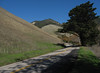 Old Creek Road, San Luis Obispo County - December 28, 2008