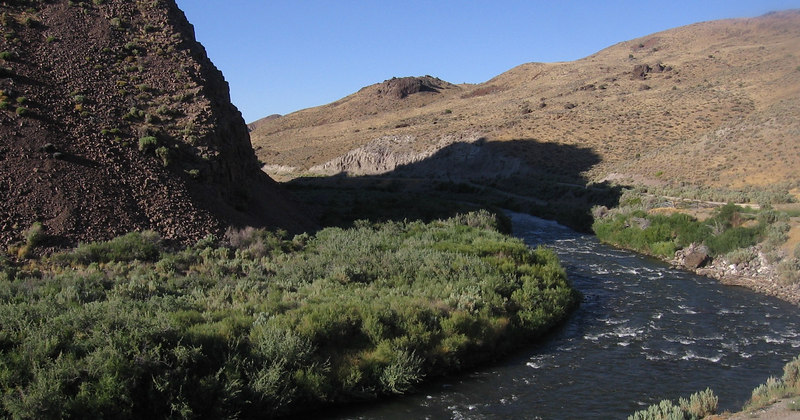 East Fork Walker River, Nevada