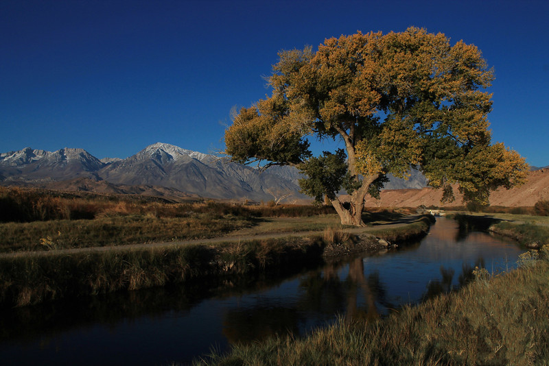 Bishop Canal and Eastern Sierra