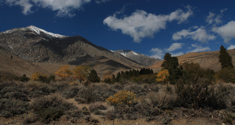 From Onion Valley Road