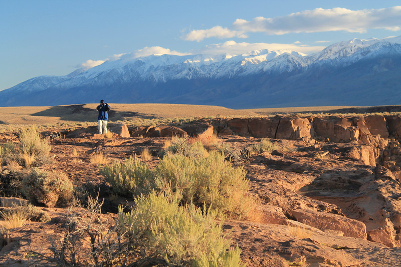 White Mountains, from Volcanic Tablelands