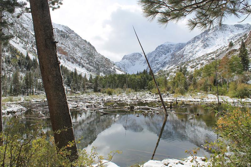 Beaver Pond, Lundy Canyon