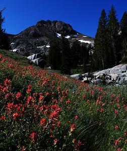 Kirkwood - Carson Pass - July 19-21, 2013