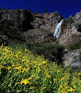 Sardine Creek Falls - August 4, 2013