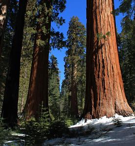 Yosemite - March 3, 2012