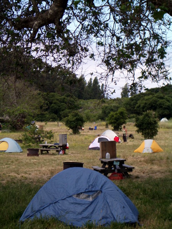 The campsite at Andrew Molera State Park